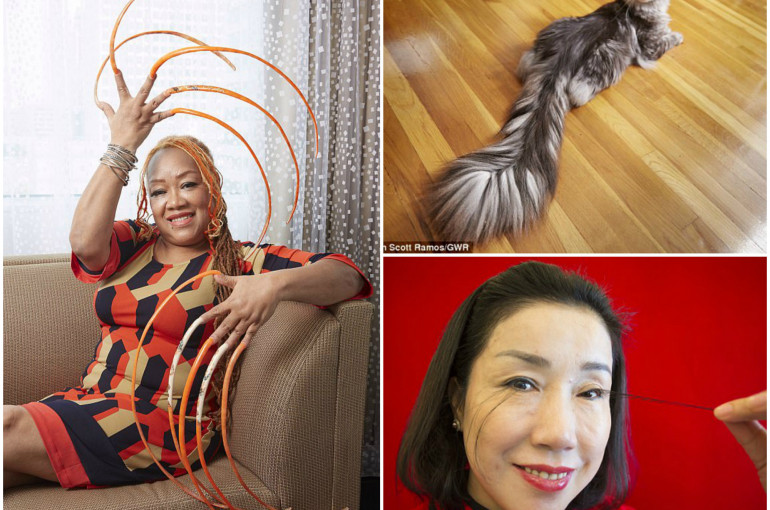 Nail Artist Spends 23 Years Growing The World S Longest Fingernails