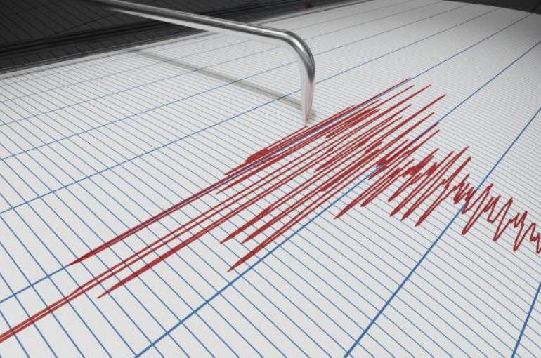 Երկրաշարժը տեղաշարժվում է ճյուղերում .մինչեւ 2021 թվականը Կալիֆոռնիայում ավերիչ երկրաշարժ է կանխատեսվել