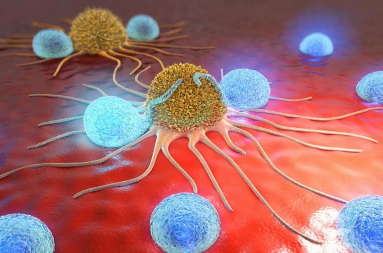 Ինչպե՞ս ստիպել օրգանիզմին պայքարել քաղցկեղի դեմ. բուժման չորրորդ մեթոդը