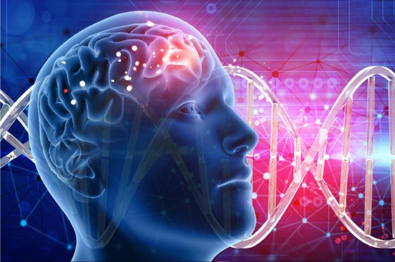 Տեսանյութ. Գլխուղեղի ուռուցքը կարո՞ղ է տարածվել դեպի այլ օրգաններ. գլխուղեղի բոլոր ուռուցքները չարորակ են  համարվում