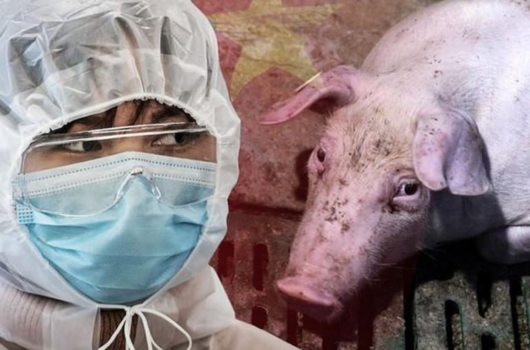 Նախազգուշացում ՝ վիրուսի նոր տեսակ են հայտնաբերել, որը «համավարակ դառնալու մեծ ներուժ ունի»