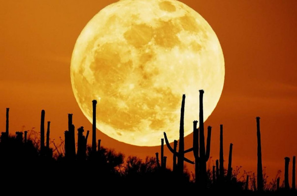 Նոյեմբերի 14-ին Երկրի բնակիչներն ականատես կլինեն այս տարվա երկրորդ «գերլուսնին»