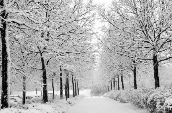 Հունվարի 3-ից ջերմաստիճանը կնվազի